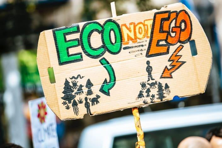 carteles sobre el ecosistema.